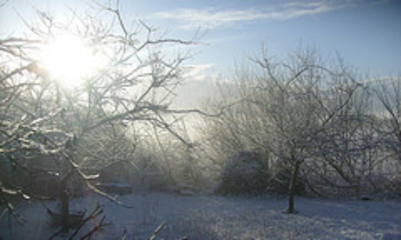 winterprogrammbild